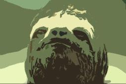 il vero volto di brad