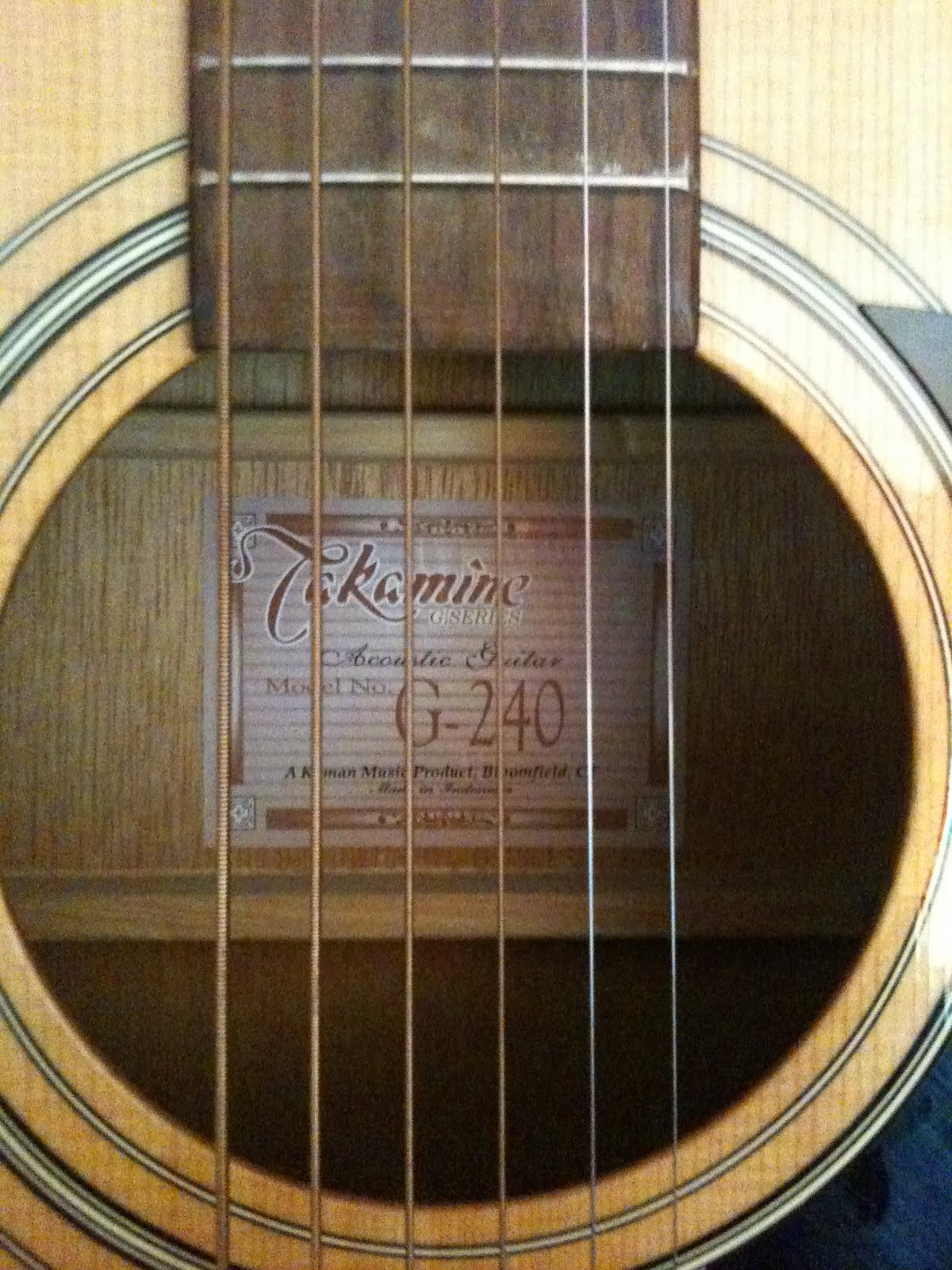 Lost In Transition Takamine Acoustic Guitar 100
