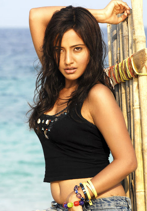 neha sharma on the beach in shorts photo gallery
