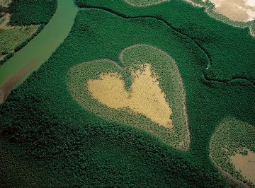 Heart-Shaped Nature
