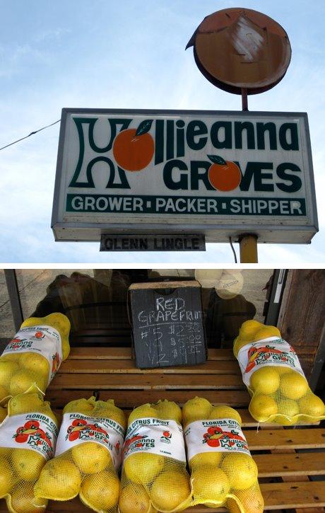 Hollieanna Groves