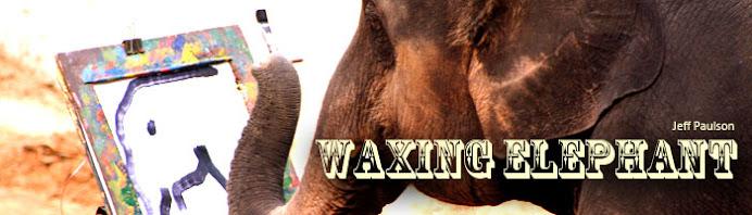 Waxing Elephant