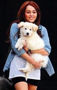miley - @yk(:: Miley Cyrus turnede!
