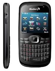 CSL BLUEBERRY W8000
