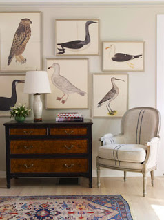 olof rudbeck the younger bird prints   simple pretty