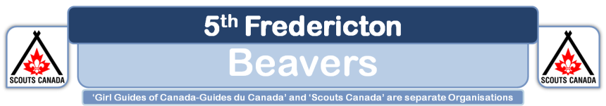5th Fredericton Beavers
