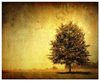 A veces, me siento sola...
