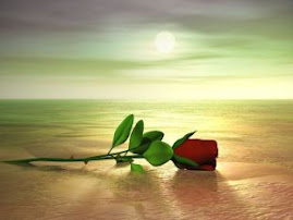 La rosa de la amistad.