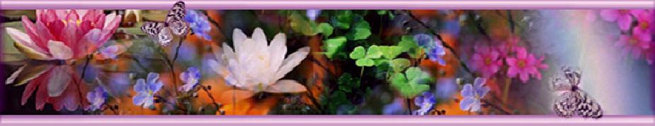 """""""En la esencia de lo natural, radica la belleza"""""""