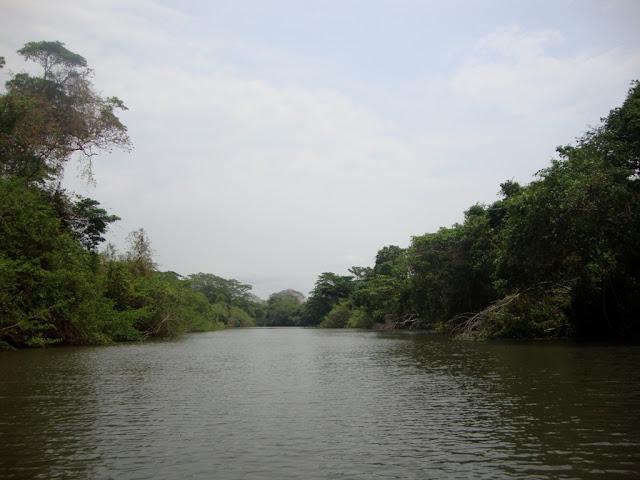 Mata Ciliar do Rio das Almas
