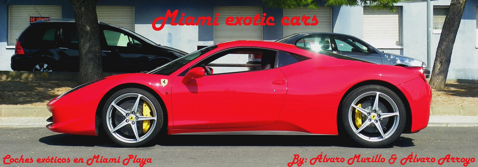 Miami Exotic Cars