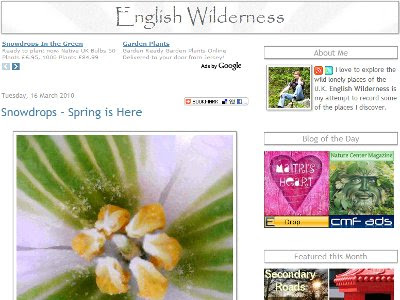 a new look for English Wilderness