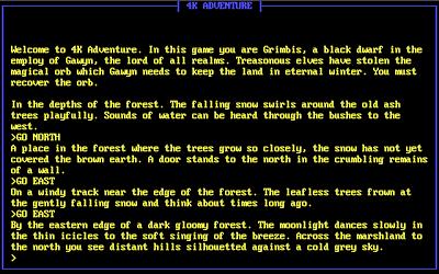 Text Adventure: 4K Adventure