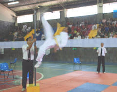 COPA  DE TAEKWONDO 2010.