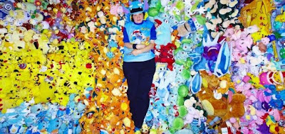 Pokémon collector breaks world record,Lisa Courtney largest collection,Pokemon world records,worlrd records 2010