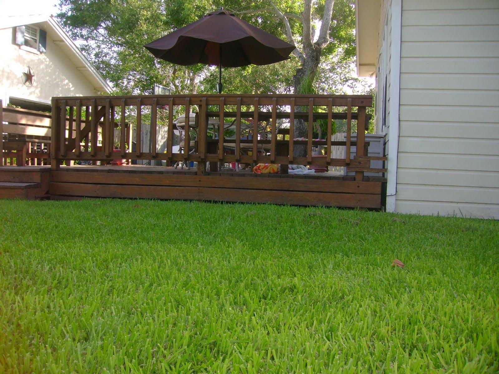 Backyard Background Images : 613 Stirman Street, 78411 More exterior pics