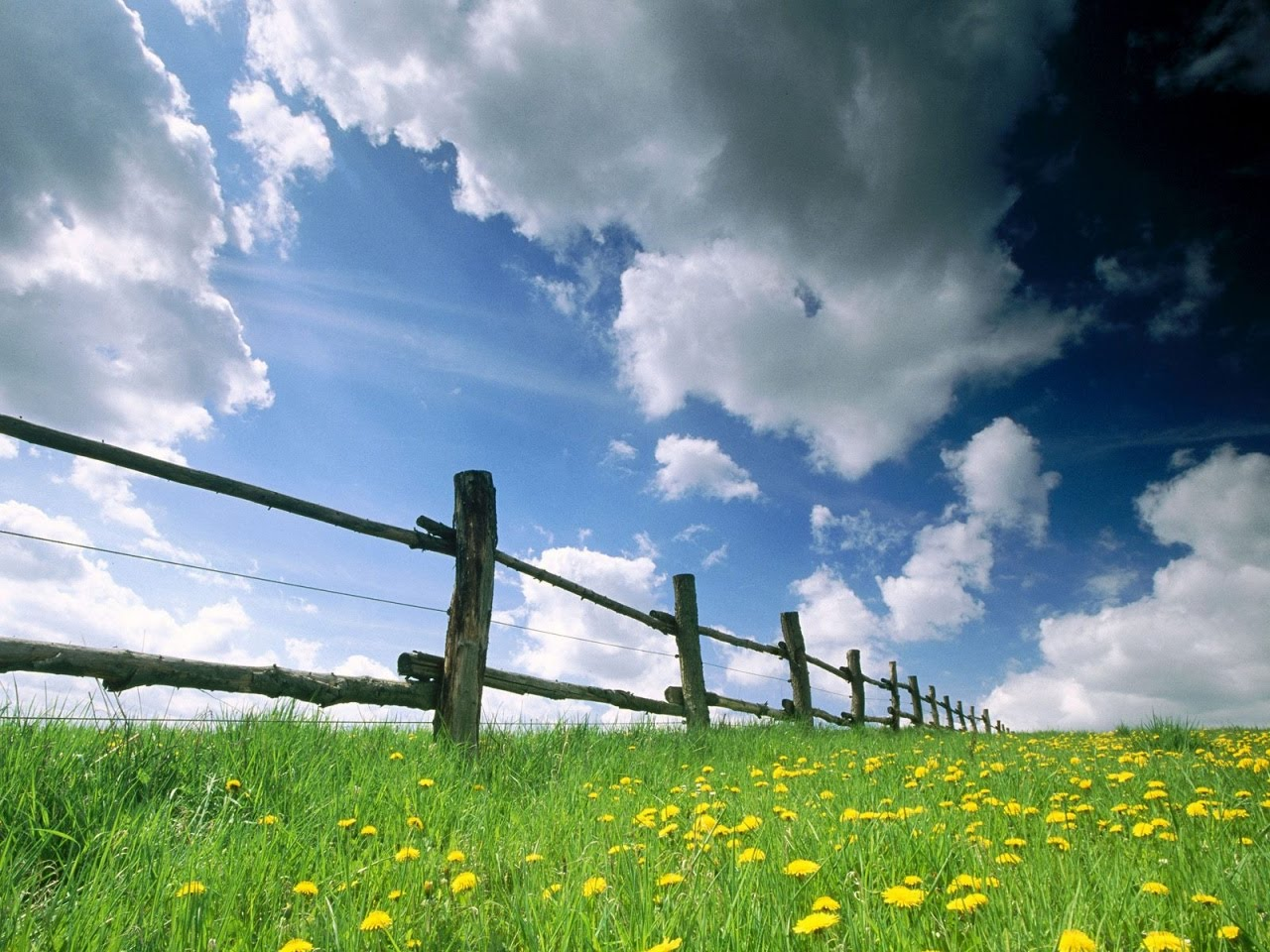 Hidup Dan Pengembaraan Seperti Langit Dan Bumi