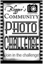 Blogger's Community Photo Chellenge