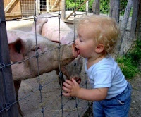 Love me, love my pig!