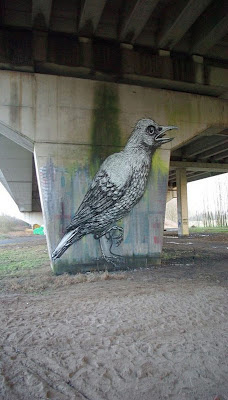 Animal Graffiti Street Art