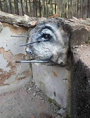 Exotic Eye Of Rubble Graffiti Art