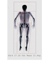 Body Composition Scan 1