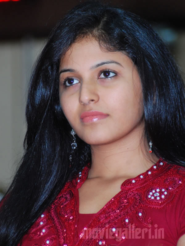 tamil actress anjali photos in rettaisuzhi audio launch