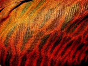 Woven Shibori scarf