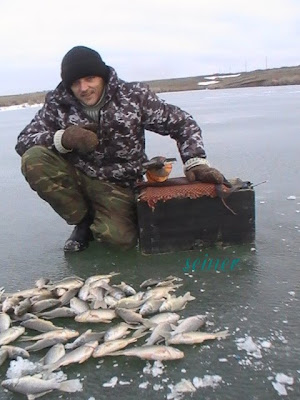 Карась со льда
