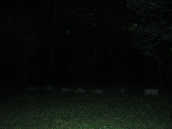 PIC FROM CEMETERY IN KY