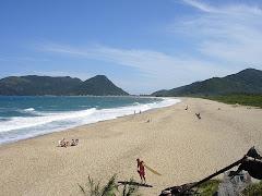 Enero 2009. han pasado 5 años desde la última vez en el sur de la isla. 53 DIAS Y (DES)CONTANDO...