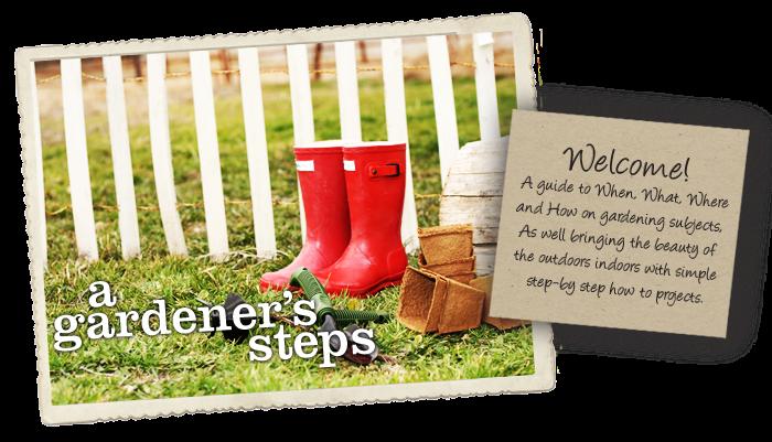 A Gardener's steps
