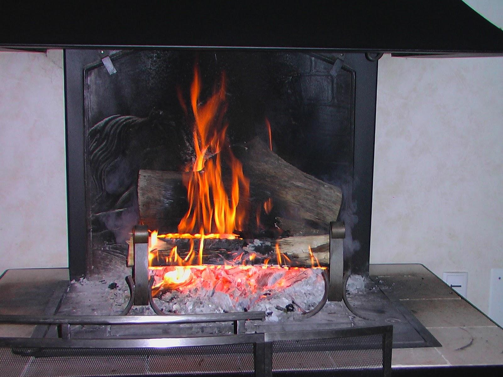 Pigeonnieresplendy2: fais du feu dans la cheminée....je reviens ...