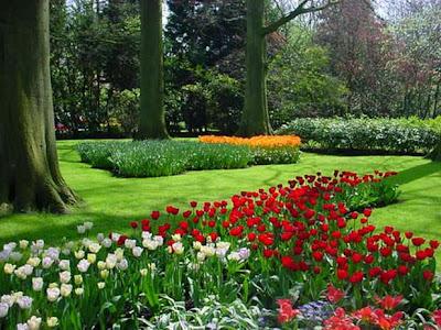 Keukenhof Gardens_Holland