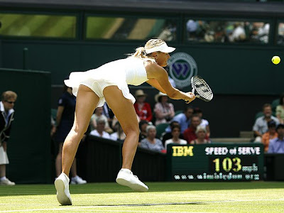 Sharapova on Sportnetbr  Sharapova Fora