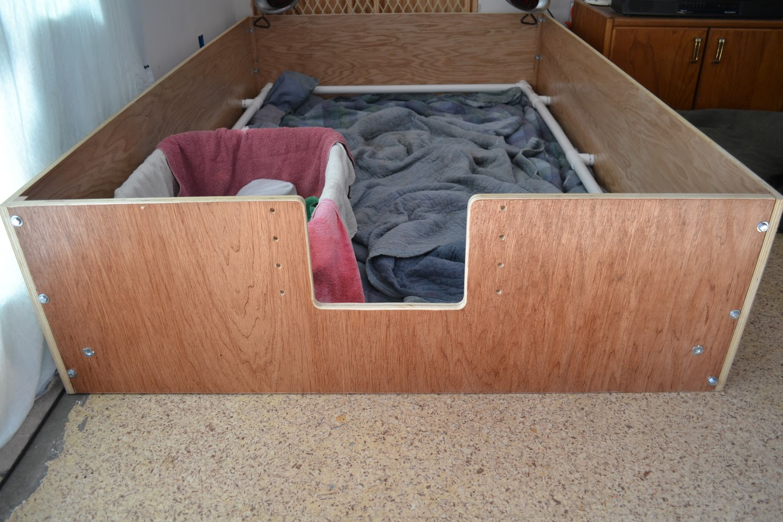 Whelping Box With Pig Rail Pawtuckaway Labrador Retrievers