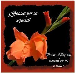 Blog especial