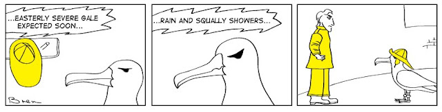 cartoon,lighthouse cartoon,gag cartoon,funny,cartoon strip,carton strip,comic strip,Humboldt,albatross,lighthouse,lighthouse keeper,sea,marine,bird,stormy weather, storm, weather forecast,sou wester, waterproofs