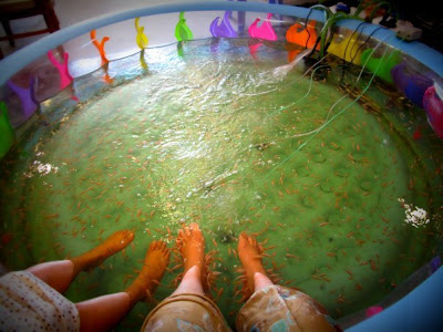 Madamoiselle ver 2 fish spa for Fish foot spa