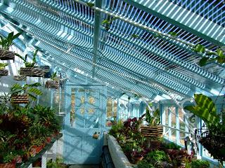 Darwin's glasshouse