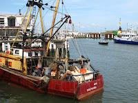 Oostende harbour