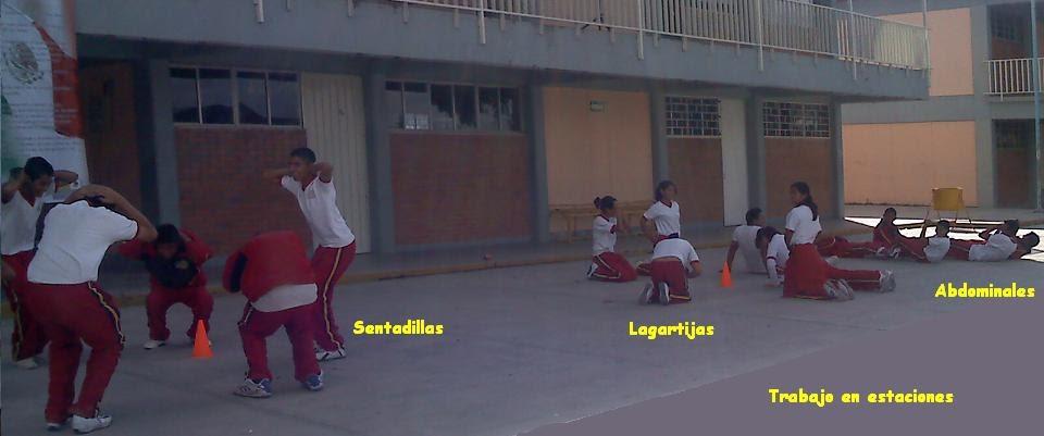 Circuito De Accion Motriz : Educación física ii circuito de acción motriz