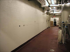 Peintures en tromple l'oeil de Eric Grohe. Voici le mur avant...