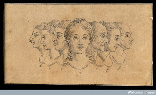 Wellcome Library Insight - Fascinating Faces