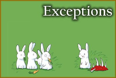 The Exception - The Exceptional Exception
