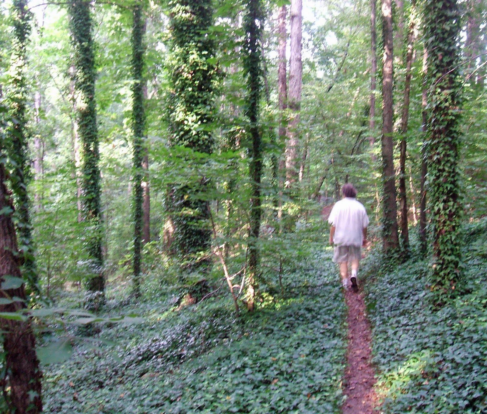 [woods1]