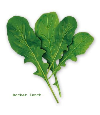 Rocket Lunch