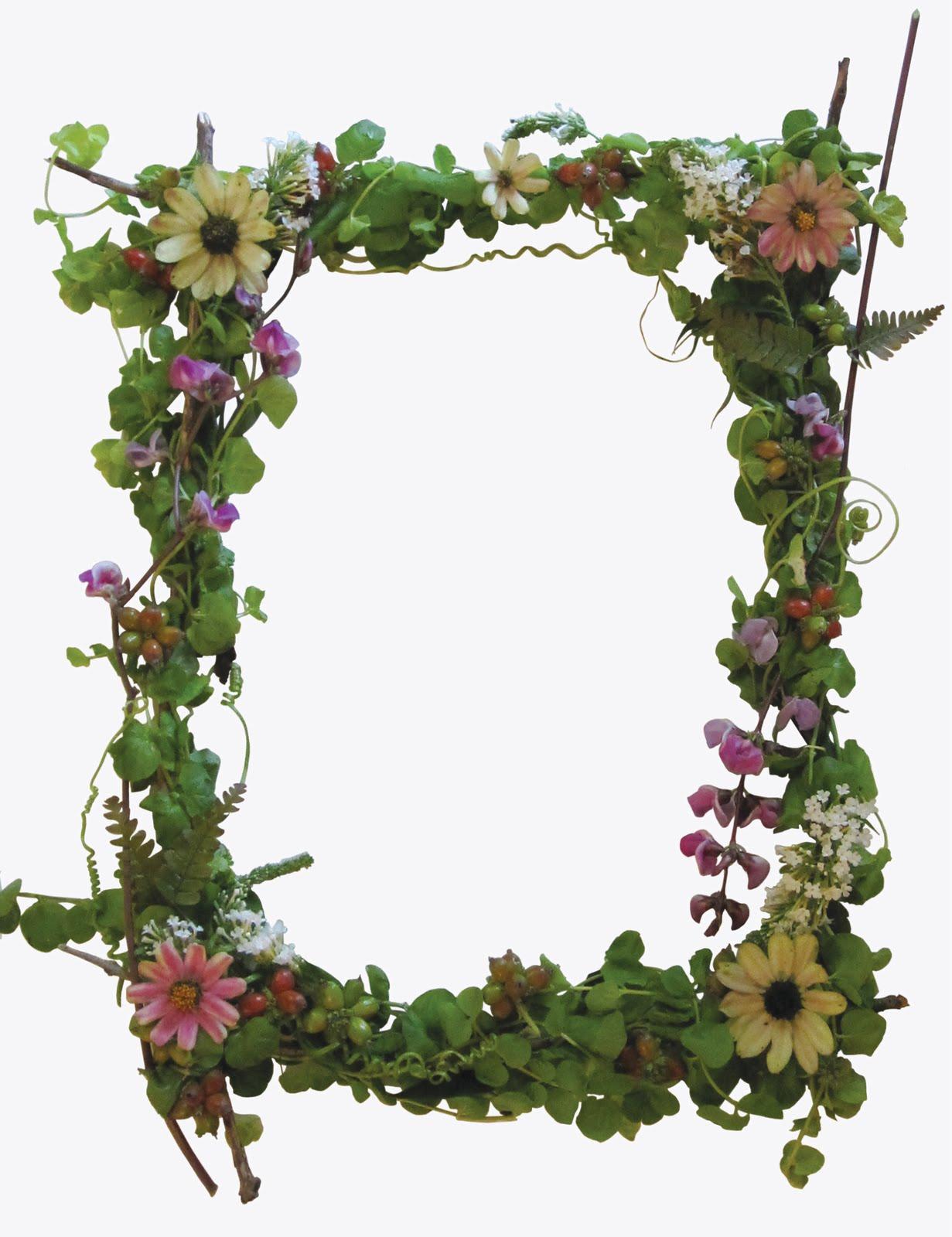 Meanwhile: A garden frame