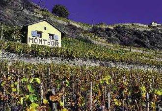 Domaine du Mont d'Or - Pont-de-la-Morge