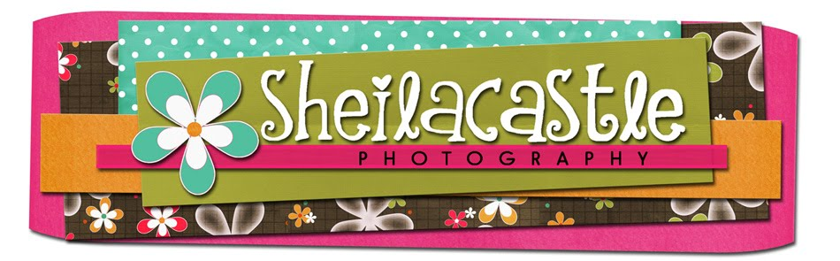 SheilaCastle Cincinnati Northern Kentucky Newborn Child Family Maternity Engagement Photographer